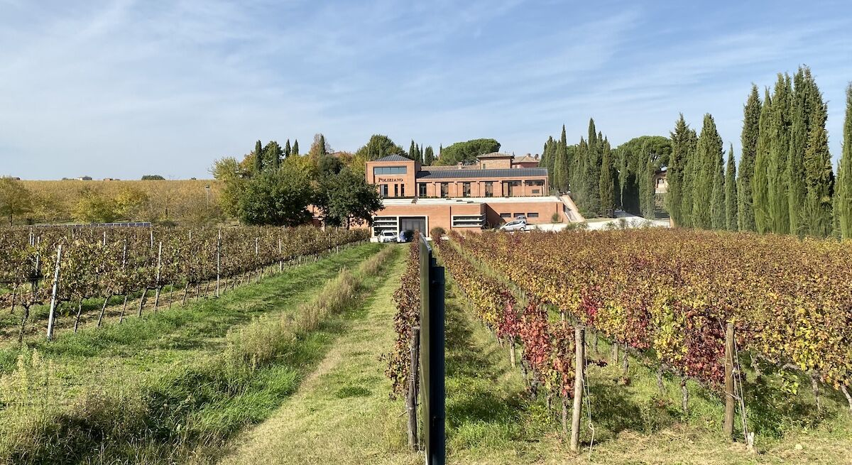 Chianti ültetvények - Toszkána - Oasz borok